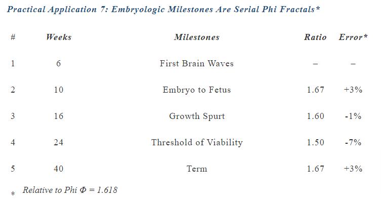 Embryologic Milestones Are Serial Phi Fractals